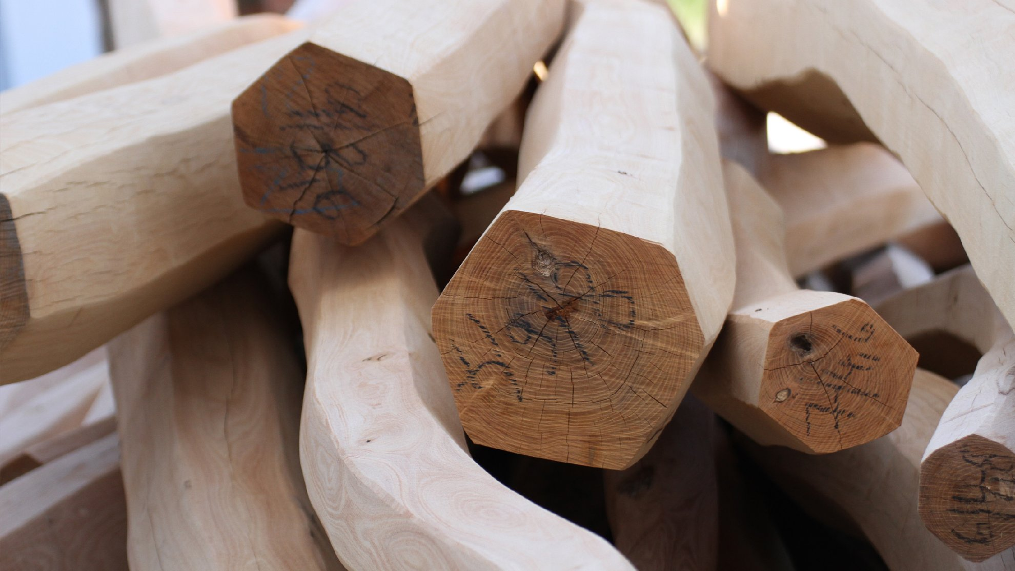 Robbinia Rounded logs